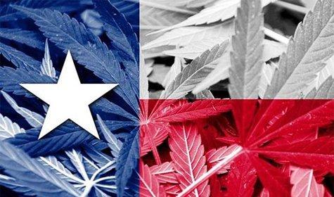 Would Legalizing Marijuana Boost The Texas Economy? [VIDEO]